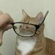 Аватар пользователя seikimatsu
