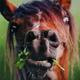 Аватар пользователя EzaHettR