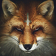 Аватар пользователя FoxMulder116
