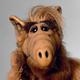 Аватар пользователя VVerVV0lf