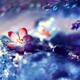 Аватар пользователя Amelyra