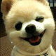 Аватар пользователя Zenkalion
