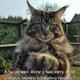 Аватар пользователя serg1301
