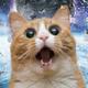 Аватар пользователя Dangry2