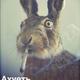 Аватар пользователя KiroYoll