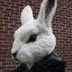 Аватар пользователя BunnyBi
