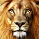 Аватар пользователя PavelBo
