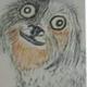Аватар пользователя kinanebudet