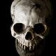 Аватар пользователя bissextile