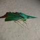 Аватар пользователя Grudi22