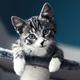 Аватар пользователя p4vzvolod33