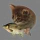 Аватар пользователя CheapAlino