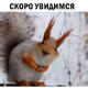 Аватар пользователя ekbpd