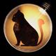 Аватар пользователя BulbCat