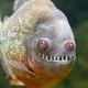 Аватар пользователя Kentavrinushka
