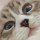 Аватар пользователя Jurabsk
