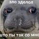 Аватар пользователя Jb10