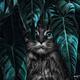 Аватар пользователя Alexancha1990