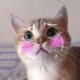 Аватар пользователя ImperatorJopa