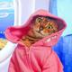 Аватар пользователя kogtiauzerMrr