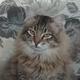 Аватар пользователя laska82