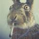 Аватар пользователя MrFreeman18