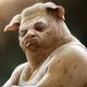 Аватар пользователя draerr