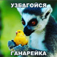 Аватар пользователя TransGorTax