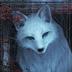 ArcticRedFox