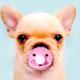 Аватар пользователя LoveTanya