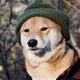 Аватар пользователя CowboyGentleman