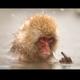 Аватар пользователя Stromage01