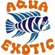 Аватар пользователя AquaExotic