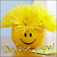 Аватар пользователя Liss251