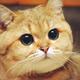 Аватар пользователя 665677