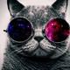 Аватар пользователя tdm13