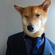Аватар пользователя Canis.Major