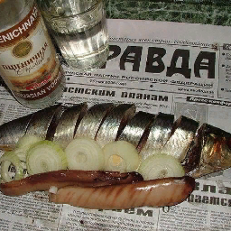 Papasha.14