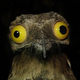 Аватар пользователя x.moderator