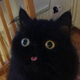 Аватар пользователя Ballastre