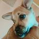 Аватар пользователя Anastasiya42