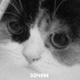 Аватар пользователя FoxtrotNovember
