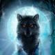 Аватар пользователя Velziwolf