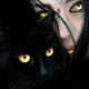 Аватар пользователя LadyMistery