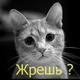 Аватар пользователя Koshebyaka