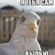 Аватар пользователя youngpilot