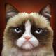Аватар пользователя Jagailo
