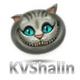 Аватар пользователя KVShalin