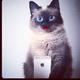 Аватар пользователя Margoschka20