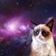 Аватар пользователя MuuSa